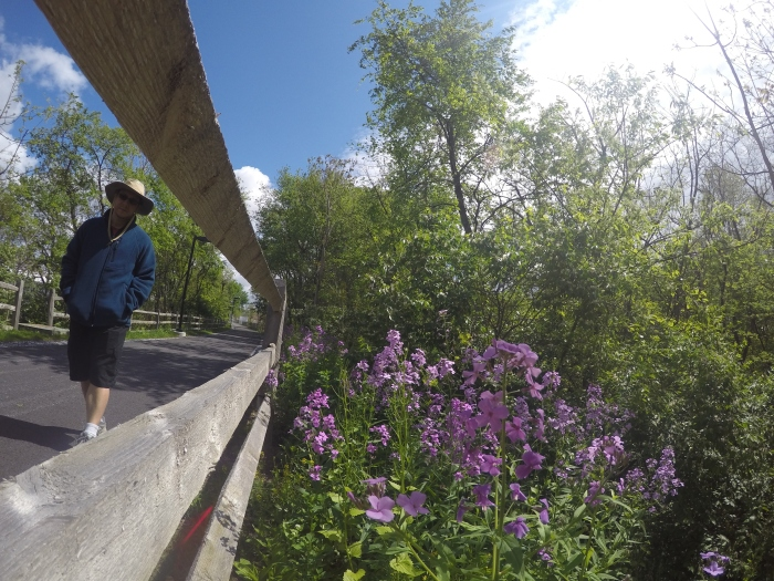 Fun view of the Akron Rail Trail