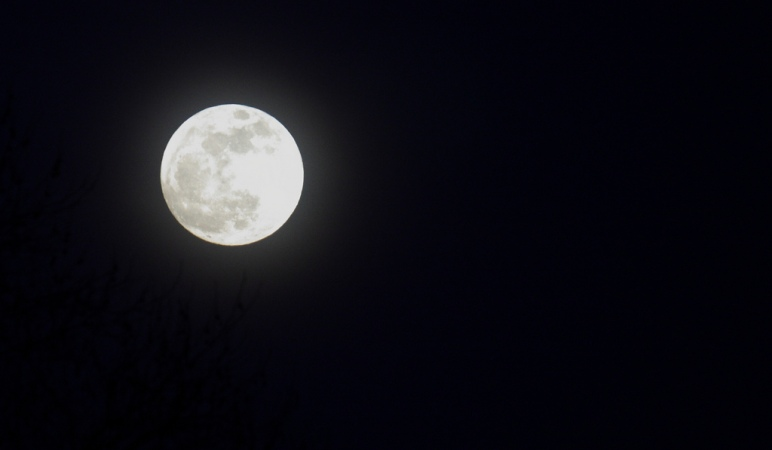 Full Moon from January 29, 2010.