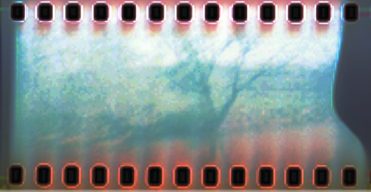 35mm Holga Image with Sprockets