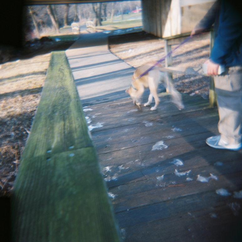 Sam walking Sputnik.