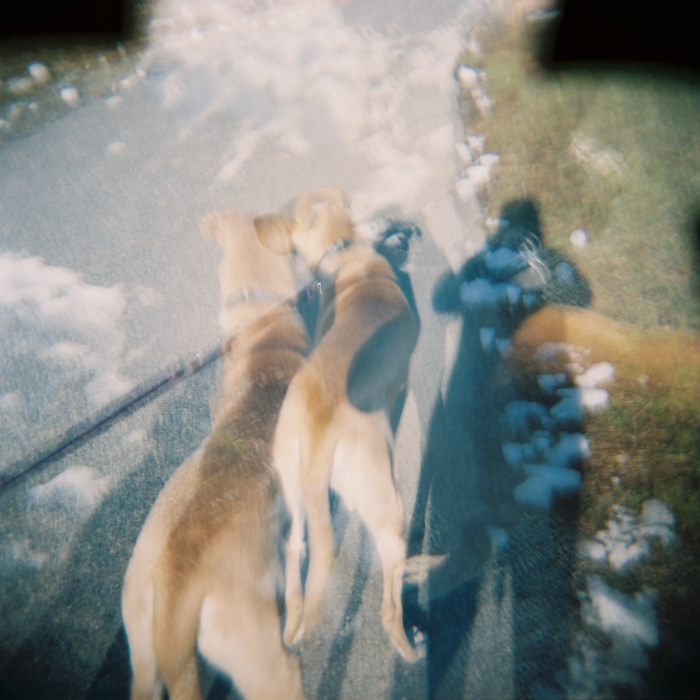 Double dog exposure!!